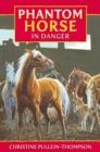 Image for Phantom horse in danger