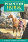 Image for Island mystery