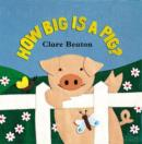 Image for How big is a pig?