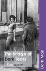 Image for The bridge of dark tears