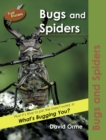 Image for Bugs and spiders