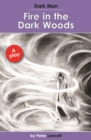 Image for Fire in the dark woods  : a play