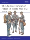 Image for The Austro-Hungarian forces in World War I2: 1916-18 : v. 2 : 1916-18