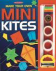 Image for Make Your Own Mini Kites