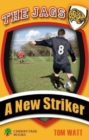 Image for A new striker