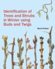 Image for Identification of trees and shrubs in winter using buds and twigs