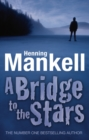 Image for A bridge to the stars