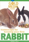 Image for Golden tips for keeping your first rabbit