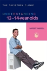 Image for Understanding 12-14-year-olds