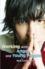 Image for Working with anger and young people