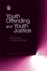 Image for Youth offending and youth justice