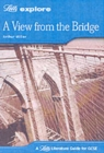 Image for A view from the bridge, Arthur Miller  : guide