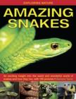 Image for Amazing snakes  : an exciting insight into the weird and wonderful world of snakes and how they live, with 190 pictures