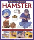 Image for How to look after your hamster  : a practical guide to caring for your pet, in step-by-step photographs