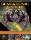 Image for Sensational spiders  : a comprehensive guide to some of the most intriguing creatures in the animal kingdom, with over 220 pictures