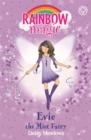 Image for Evie the mist fairy