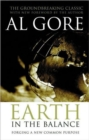 Image for Earth in the balance  : forging a new common purpose