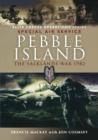 Image for Pebble Island  : Operation Prelim