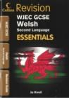 Image for WJEC GCSE Welsh second language