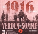 Image for The 1916 experience  : Verdun and the Somme