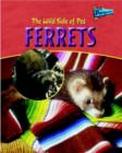 Image for The wild side of pet ferrets