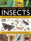 Image for The natural history of insects  : a guide to the world of arthropods, covering many insect orders, including beetles, flies, stick insects, dragonflies, ants and wasps, as well as microscopic creatur