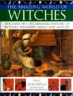 Image for The amazing world of witches