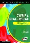 Image for Datblygu Mathemateg: Cyfrif a Deall Rhifau Blwyddyn 6