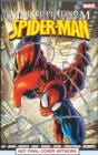Image for The definitive Spider-Man