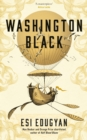 Image for Washington Black  : a novel