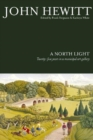 Image for A north light  : twenty-five years in a municipal art gallery