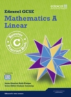 Image for Edexcel GCSE mathematics A linear: Booster C practice book