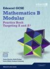Image for Mathematics B modular: Practice book :