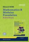 Image for GCSE Maths Edexcel 2010: Spec B Foundation ActiveTeach Pack