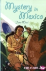 Image for Mystery in Mexico