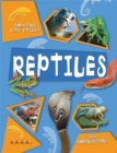 Image for Reptiles and amphibians
