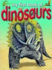 Image for My first book of dinosaurs