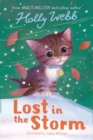 Image for Lost in the storm