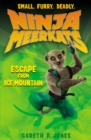 Image for Escape from ice mountain