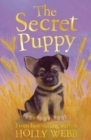 Image for The secret puppy