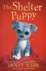 Image for The shelter puppy