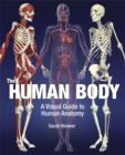 Image for The human body  : a visual guide to human anatomy
