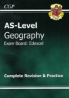 Image for AS-level geography: The revision guide
