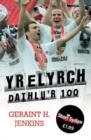Image for Stori Sydyn: Yr Elyrch - Dathlu'r 100