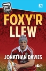 Image for Foxy'r llew