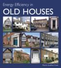 Image for Energy efficiency in old houses