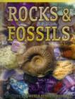 Image for Rocks & fossils