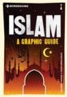 Image for Introducing Islam