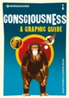 Image for Introducing consciousness