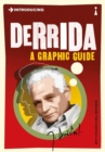 Image for Introducing Derrida